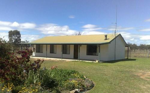 Ashford NSW