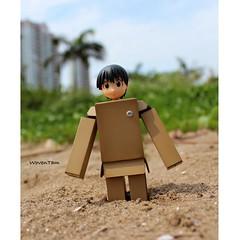 10172570_10201864661681531_4334340766654951851_n (WovenTam) Tags: toys danbo danboard minidanboard