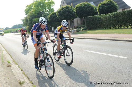 Geel Oosterlo  (284)
