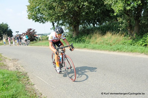 Geel Oosterlo  (94)
