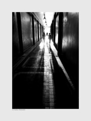 Shadow of the giants (salar hassani) Tags: shadow sony giants salar hassani rx100m3