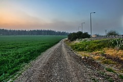 Road by a field at dusk (AlexTheLazy (on and off)) Tags: road sunset field israel haze grove dusk path valley  hdr gravel jezreel   hamsin    megiddo  hayogev sharav  northerndistrict