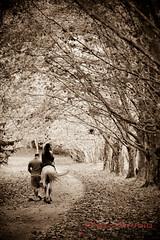 Caminho da vida (Didier Pelgia) Tags: horse brasil dad filha inverno pai cavalo caminho rvores especial canoas terespolis ecoterapia