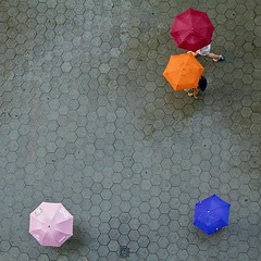 Umbrellas in Barcelona