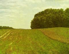 Finger Lakes (alamme) Tags: summer landscape upstateny newyorkstate fingerlakes