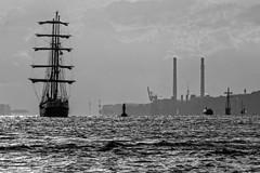 Barkentine Thalassa im Hamburger Hafen (sozl) Tags: hamburg hafen segelschiff altona thalassa traditionsschiffparade
