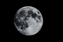 Superluna (cives-expat) Tags: españa moon spain luna andalusia fuentebravía elpuertodesantamaría supermoon superluna nikond7100