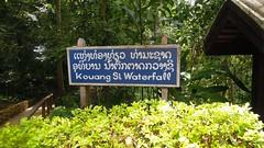 Kuangsi Waterfall Park, Laos (David McKelvey) Tags: park waterfall nikon coolpix laos province luangprabang 2014 kuangsi p300