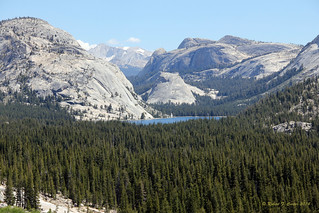 Lake Tenaya From Afar