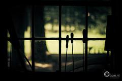 The workshop (Oape) Tags: window silhouette view indoor tools workshop