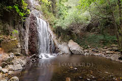 Sos Molinos - Santu Lussurgiu (OR) (neroargento.com) Tags: sardegna panorama water landscape waterfall nikon acqua cascade cascata santulussurgiu sosmolinos nikonclubit
