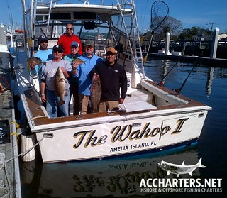 amelia island group fishing tours