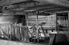 Barn interior (estenvik) Tags: blackandwhite abandoned norway barn norge log kodak farm small trix erik 1968 srtrndelag re2 rissa grd tmmer smbruk fjs logged topcon topcor nedlagt stenvik estenvik fjsinterir tmmerfjs tmra