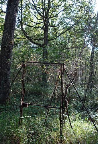 Chartrettes Bois St Denis (21)