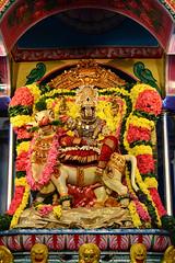 அருள்மிகு  காமாக்ஷி அம்மன்  ரிஷப வாஹனத்தில் மஹேஸ்வரி  அலங்காரம். (Kapaliadiyar) Tags: maheshwari navarathri d7100 navaratricelebrations kapaliadiyar nikond7100 velleeswarartemplemylapore