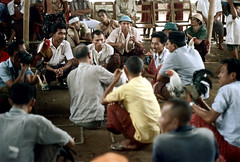 26-167 (ndpa / s. lundeen, archivist) Tags: people bali man color men bird film birds 35mm indonesia 26 nick cock arena southpacific handlers rooster cocks 1970s spectators 1972 handler roosters indonesian crouching cockfight gamecock onlookers squatting gamecocks balinese dewolf oceania pacificislands cockfighting nickdewolf photographbynickdewolf cockfightingarena reel26 cockfightarena