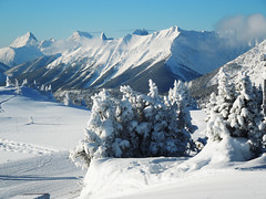 Fresh Snow (Stuart.67) Tags: naturethroughthelens snow fall clouds bluesky mountains banff canada alberta nikon
