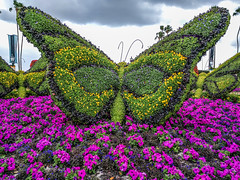 2017 flowerandgardenfestival epcot waltdisneyworld disney... (Photo: 4myrrh1 on Flickr)