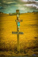Wegweiser- Signpost (andreaskerner) Tags: wegweiser signpost bayrischerwald herbst frühling wandern