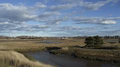 Belle Isle Marsh, East Boston, MA (marilora) Tags: marsh saltmarsh nature landscape eastboston wetlands