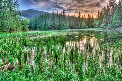 Glacial lake in Low Tatras mountains, Slovakia (nicksimages.com) Tags: park trees sunset wild sky sun lake reflection green tourism nature water beautiful beauty grass cane clouds forest landscape mirror countryside twilight weeds scenery colorful view natural dusk country scenic tourist calm hills clean slovakia wilderness tarn hdr coniferous jasna glacial slovak liptov lowtatras demanova demanovskadolina vrbickepleso
