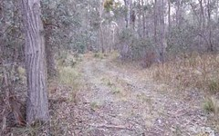 Lot 12 Sara River road, Mount Mitchell NSW
