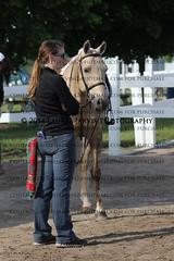 IMG_6676 (laureljarvis) Tags: show park summer horse classic bolton jumper hunter equestrian equine caledon palgrave