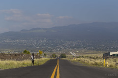 Root  19 Q.K. Hwy (caz76KOBE) Tags: city travel usa canon landscape eos hawaii bigisland dslr canoneos ef kona 6d landscapephotography 2013 eflens eos6d canonprimelens ef100mmf28lisusmmacro canonef100mmf28lisusmmacro 201311