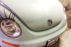 Ms. Beetle Is Looking Particularly Fine Today (Madison Guy) Tags: car volkswagen eyes lashes beetle headlights headlight