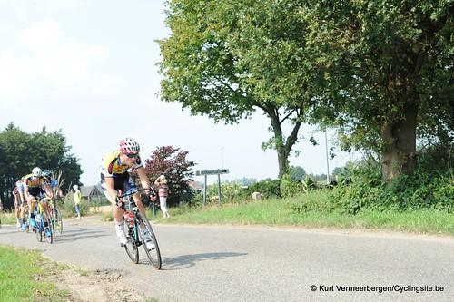 Geel Oosterlo  (100)