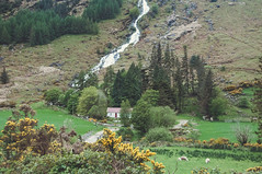 Glenmalure Farmhouse (shaymurphy) Tags: ireland irish waterfall forsale sheep farm cottage irland buy wicklow purchase irlanda irlande irska glenmalure 爱尔兰 irlandia redbubble أيرلندا ايرلندا dsc7630 ирландия ایرلند