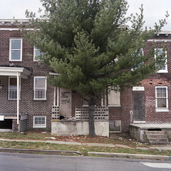 (Lesley Rivera) Tags: tree abandoned 120 mamiya film spring kodak baltimore diagonal portra boarded rowhouse 2013