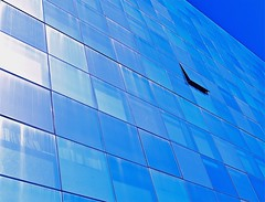 open window  - ( Explore ) (Demetrios Lyras) Tags: blue windows abstract reflection building art architecture angle fav50 bluesky openwindow 50 missionbay sfist fav10 fav5 fav25 sanfranciscocausa fav75 anglesanglesangles 50favs123