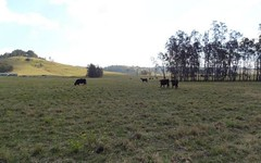 Lot 32 Dungog Road, Dungog NSW
