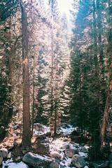 (Colin Gallagher) Tags: california travel nature vertical landscape photography unitedstates hiking roadtrip adventure fujifilm sequoia sequoianationalpark threerivers xpro1 colingallagher