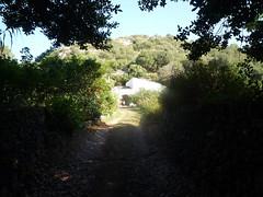 2014.Menorca.Algendar.08-14.Camino. (joseluisgildela) Tags: menorca huertos algendar barrancodealgendar