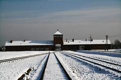 Auschwitz (0034)