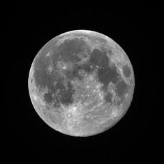 223/365: Supermoon, August 2014 (Stephen Little) Tags: moon mirror reflex luna mirrored 500mm lunar catadioptric minoltaaf500mm minolta500mmf8 supermoon minoltaaf500mmf8 sonya77 minolta500mm jstephenlittlejr slta77 sonyslta77 sonyslta77v sonyalphaslta77v