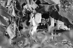 Bolivian (nextstopbombay) Tags: resa djungel svartvitt sydamerika analogt