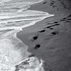Going (Cirrusgazer) Tags: sea blackandwhite beach sand footprints greece crete kalives sonya7r
