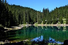 Carezza Lake (davide94.bortolotti) Tags: summer italy sun lake nature water crystal trentino carezza