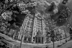 The Royal Liver Buildings (8mm & Other Stuff) Tags: liverpool canon buildings royal fisheye infrared 8mm effect liver 600d samyang