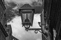 Guard (Jyrki Liikanen) Tags: street bw nikon stockholm pigeon gamlastan oldtown d800 jyrkiliikanen