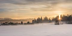 Misty sunset (hjuengst) Tags: mist misty sunset snow winter kirchsee bavaria cold frosty panorama klosterreutberg sunbeams
