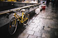 A rainy Sunday (desomnis) Tags: rain rainy wet sunday vienna wien austria österreich urban street streetphotography streetshot bokeh sigma35mm sigma35mmf14dghsmart canon6d 6d desomnis bike oldbike cinematic cinematicphotography