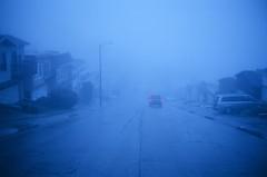 In the rain one morning by SF EYES (Robert Ogilvie) - San Francisco CA  Nikonos V Fuji 64t