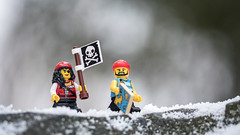 This doesn't look like the Caribbean! (Reiterlied) Tags: 105mm d500 dslr finland forest lego legography lens macro minifig minifigure nikon oulu photography pirate prime reiterlied sigma snow stuckinplastic toy wood