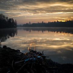 Bord de Seine un matin (Olivier DESMET) Tags: olivierdesmet paysage landscape ciel reflet reflexion feu soleil seine ricohgr gr 28mm zen