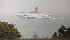 17 03 18 Stena Europe Rosslare (1) (pghcork) Tags: rosslare wexford ireland stenaline stenaeurope ferry ferries