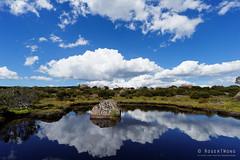 20170301-46-Rock in tarn (Roger T Wong) Tags: australia greatpinetier np nationalpark sel1635z sony1635 sonya7ii sonyalpha7ii sonyfe1635mmf4zaosscarlzeissvariotessart sonyilce7m2 tasmania wha wallsofjerusalem worldheritagearea alpine bushwalk camp clouds hike landscape reflectionrock trektramp walk